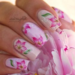 Gel polish nails photo