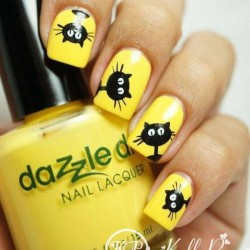 Nails with cats photo
