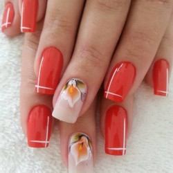 Flower nails photo