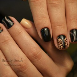 Leopard shellac photo