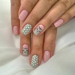 Cats on nails photo