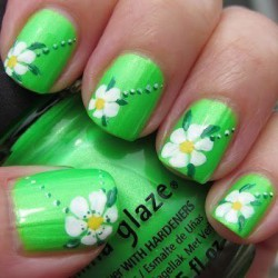 Daisies on nails photo