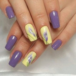 Violet And Yellow Nails Photo