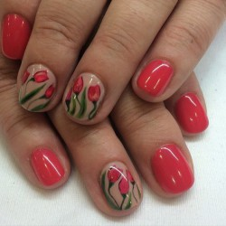 Nails with tulips photo