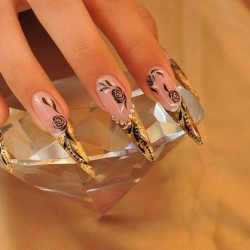 Shiny french nails photo
