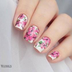 White background nails photo