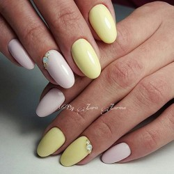 Gentle shellac nails photo