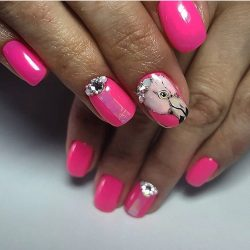 Bird nails photo