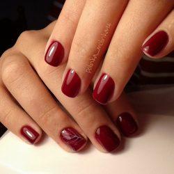 Maroon short nails photo