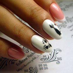 Cat paw nails photo