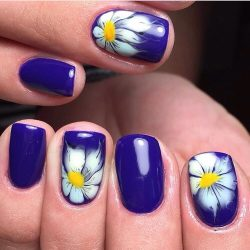 Daisy nails photo