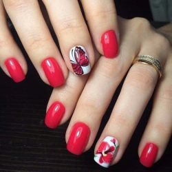 Butterfly nail art photo