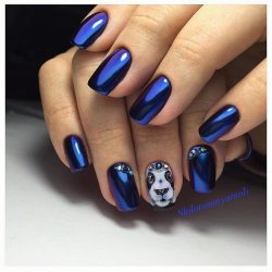 Nailswith animals photo