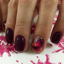 Fall short nails photo