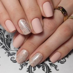 Gentle short nails photo