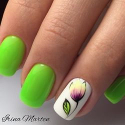 Lime nails photo